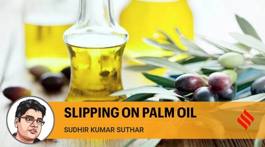 Oil palm tree cultivation push, india news, biodiversity