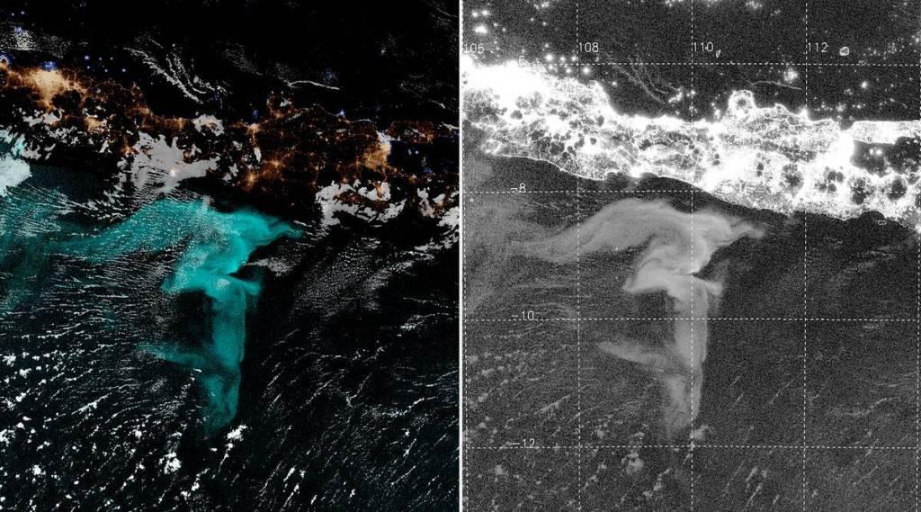 oceans, bio luminescence
