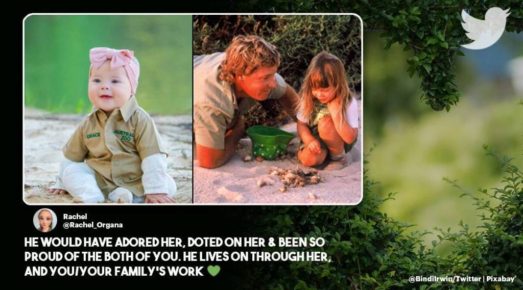 Steve Irwin death anniversary, daughter bindi Irwin, viral post, twitter reactions, Steve Irwin death anniversary