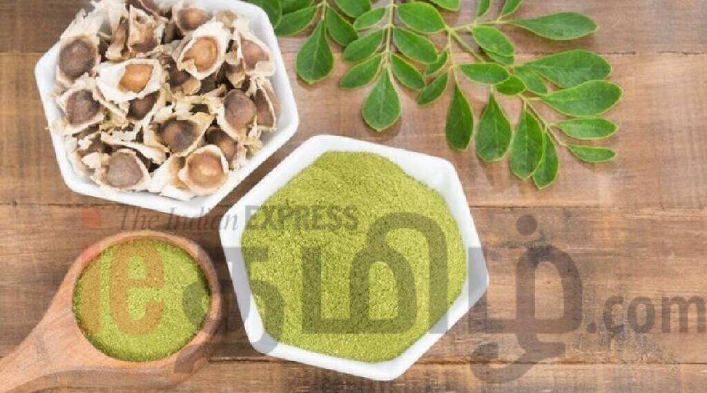 moringa benefits in tamil: Health Benefits of Moringam leaves in tamil