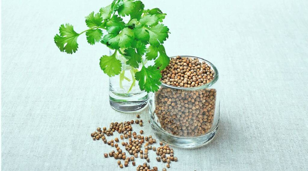 Benefits of Coriander in tamil: health benefits of coriander water in tamil
