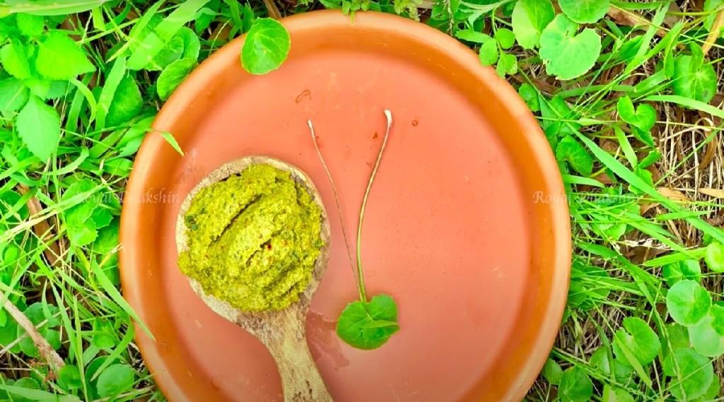 Brain Foods in tamil: simple steps for brahmi Chutney in tamil
