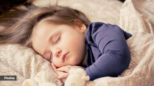 How is sleep related to memory Tamil News