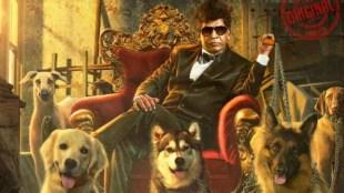 Tamil cinema news in tamil: Vadivelu' s film titled 'Naai Sekar Returns' poster release