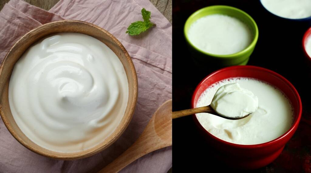 curd recipe in tamil: homemade curd with an a hour tamil