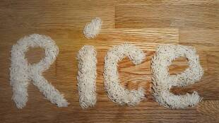 Tamil Health tips: benefits of eating white rice everyday tamil